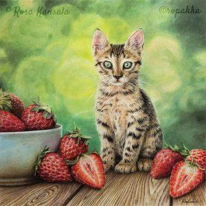 Kissanpentu ja mansikoita