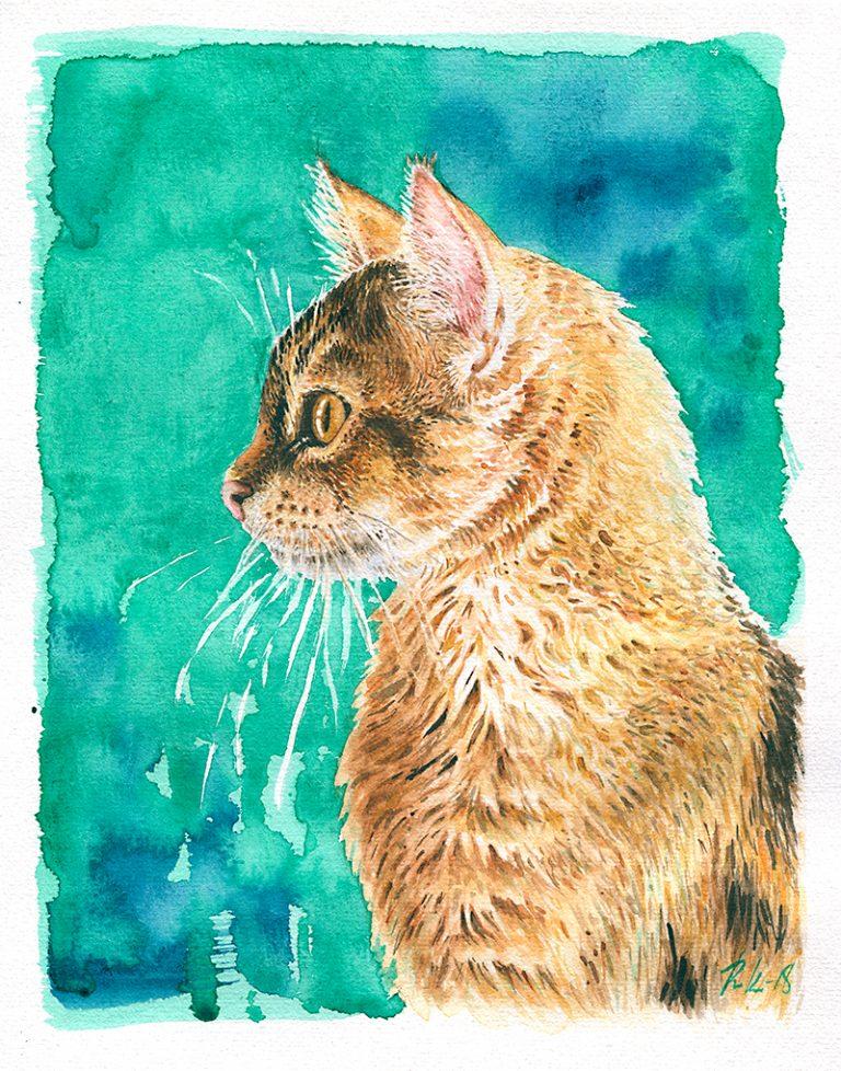 Akvarellimuotokuva kissasta