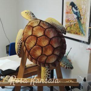 Kilpikonna lähes valmiina