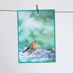 Punarinta-postikortti